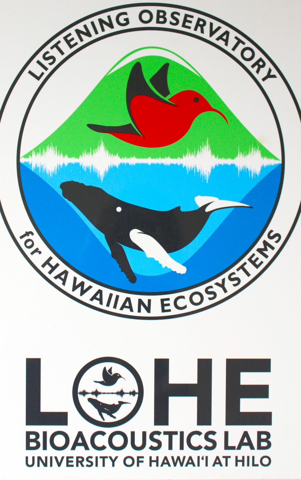 LOHO logo, with bird flying above, whale below - a waveform between them