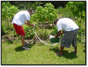 Two students working in the campus gardens.