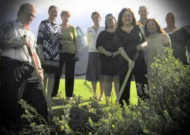 Ohia Planting