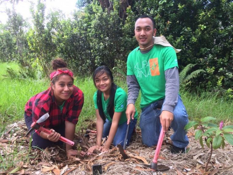 (l-r) Kupa 'Āina classmates Birolena Vaoga, Lorilei Domingo, and Roger Dalere-Keauhou plant native plants during a field trip to the Keauhou Forest Reserve.