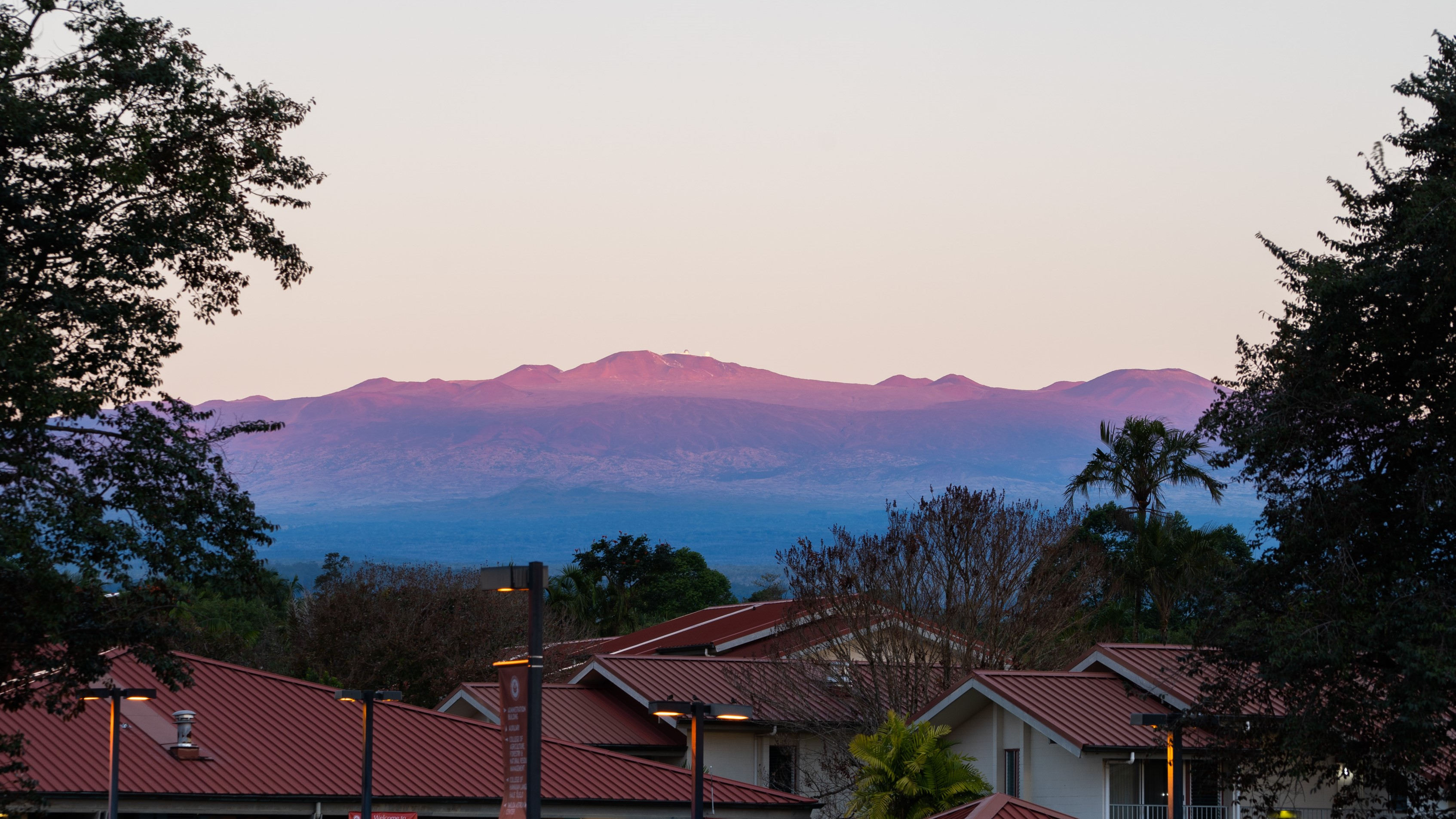 View of Maunakea from the UH Hilo campus.