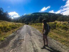 Jacinda on road