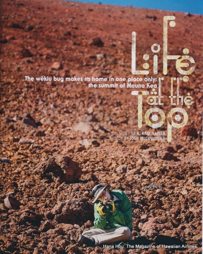 Cover photo of magazine with Jesse Eiben on red cinder (Mauankea) recording specimen. Words: Life at the Top, The wekiu bug makes its home in one place only: the summit of Mauna Kea. Story by Kam Napier. Photos by Josh McCullough. Hana Hou Magazine of Hawaiian Airlines.
