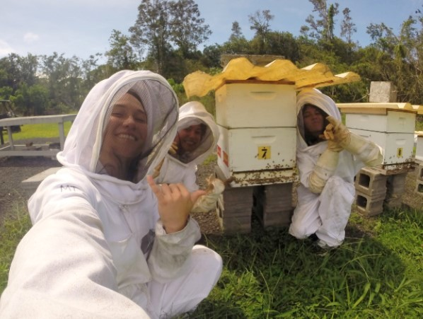 Helping to maintain UH Hilo's apiary teaches students the importance of our island's bees