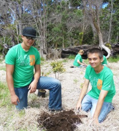 Michael and Tristan digging hole to plant tree.