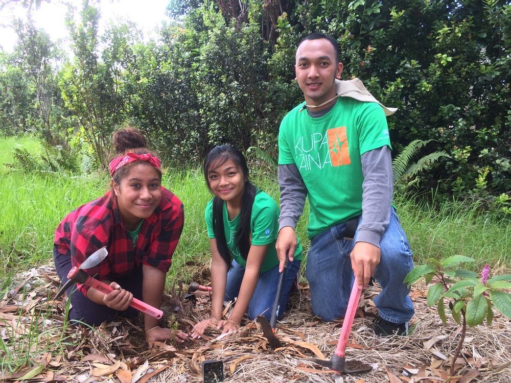 Three students with digging tools, working in plot of land. Two wear t-shirts with words Kupa 'Āina.
