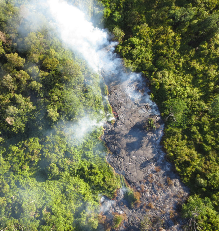 Aerial of lava flow winding through forest. Smoke rising.