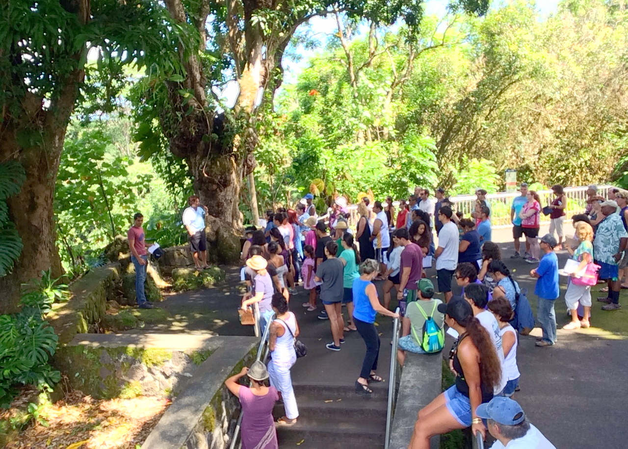 Large group of students gather at park, listening to speaker. Trees overhead.