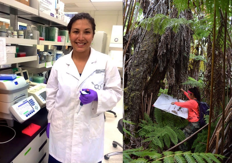 Two photos side by side. On left is Kylle in the lab, with lab coat on. At right Kylle is in the forest collecting samples from canopy. She wear a fluorescent orange shirt.