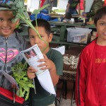 Schoolchildren with seedlings.