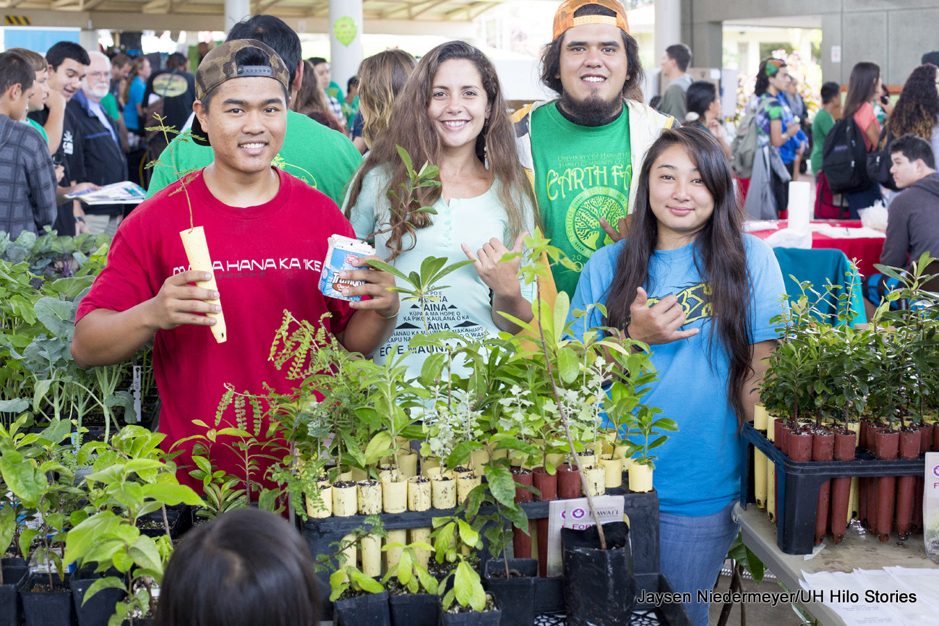 Four university students tending an agricultural booth during the Earth Fair, UH Hilo. One student is holding seedlings from a tray in the booth full of seedlings..