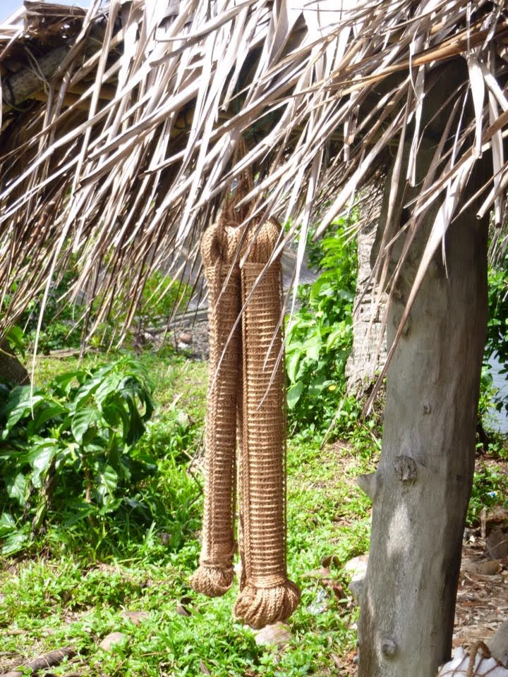 A close up of two skeins of rope tightly coiled and hanging from edge of thatched roof.,