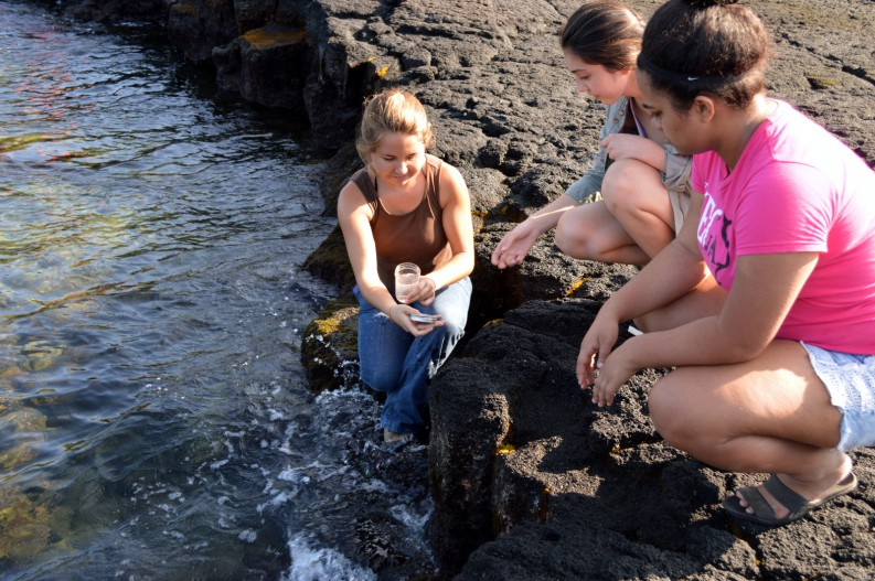 Belle Zellner, Tabetha Zapata-Mitz and Shaylee Charles collecting water samples at Keʻei, Kona.
