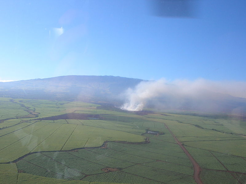 Cane field burning, smoke billowing into air and blowing out to sea.