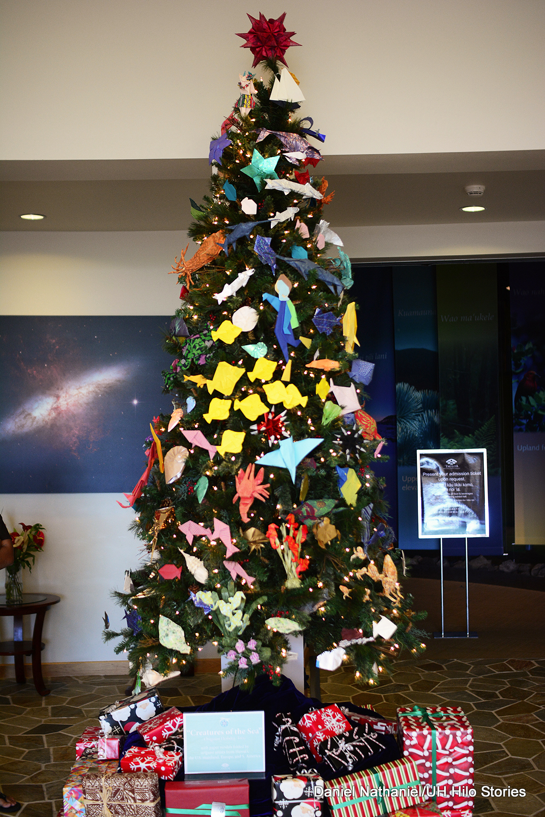 Origami tree at Imiloa (2)