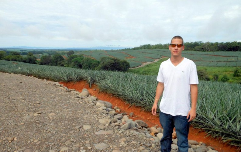 Escobar standing in a pineapple field.