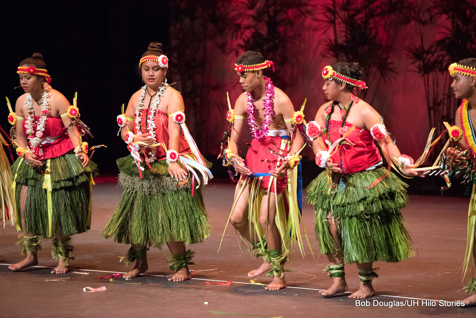 Large group of women and men, green ti and grass skirts, red tops, knees bent, all gesturing to their left, all chanting or singing.