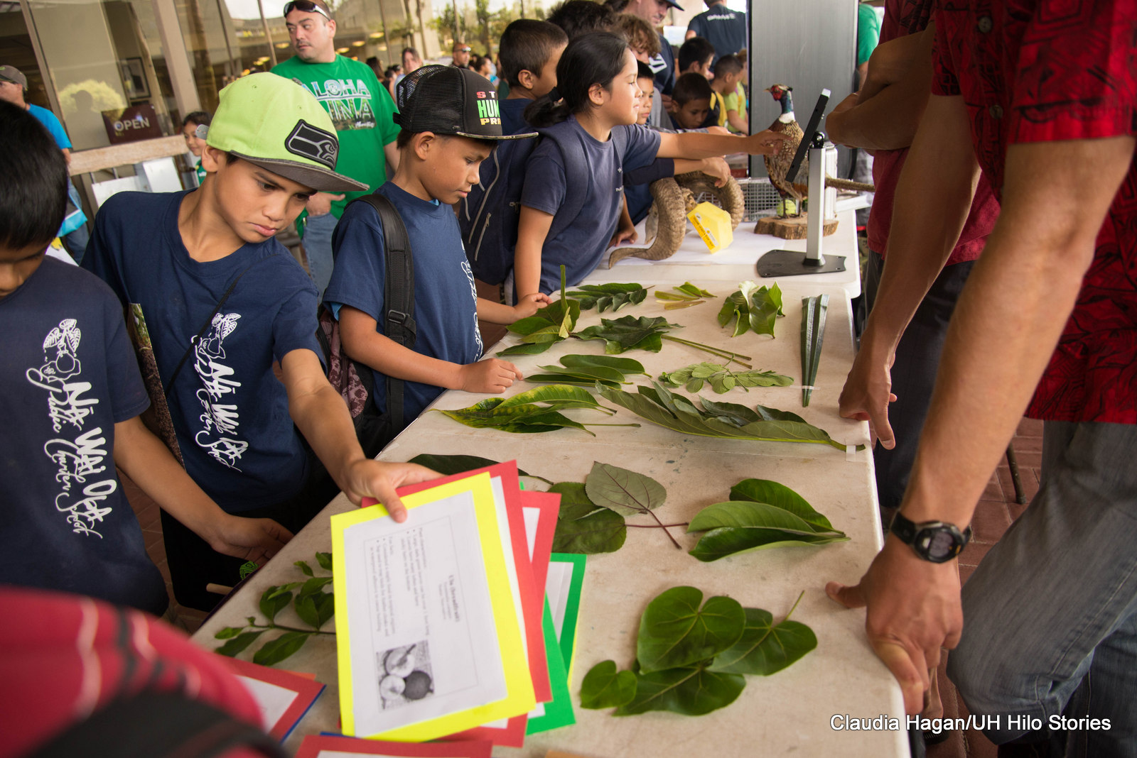 Children visiting a booth with a display of greenery and leaves. The boys all have the same colored t-shirt on.