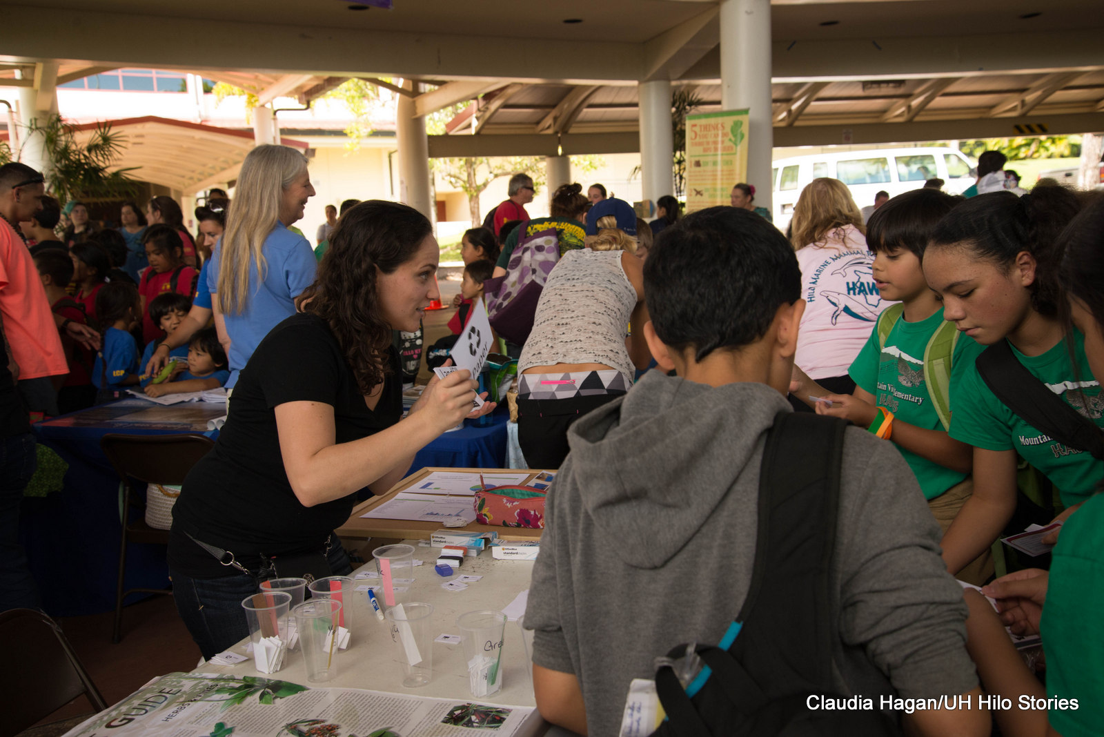 Face Painting Hilo Hawaii