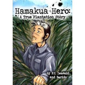 Book cover with graphic design of hero.