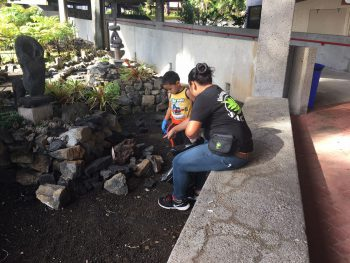 Adult and child in rock garden.