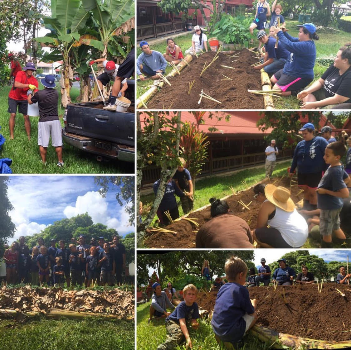 A collage of photos showing students and children working in gardens.