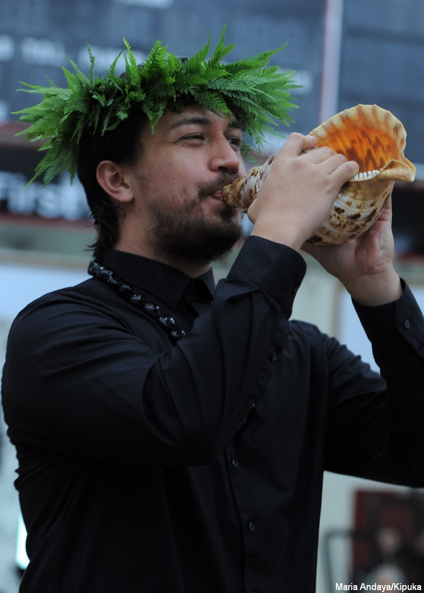 Man blowing conch shell. He wears black and has fern head lei, kukui lei around neck.