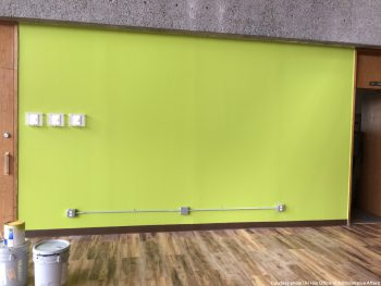 Accent wall in bright green.