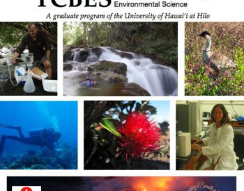 New microbiology course at UH Hilo gives students holistic view of the environment