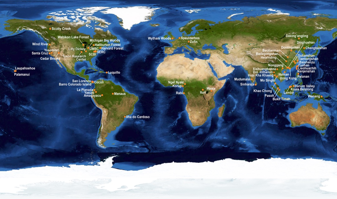 A map of the world showing the countries participating in The Center for Tropical Forest Science global network.