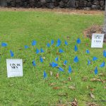 Flag display on lawn with small sign describing data.