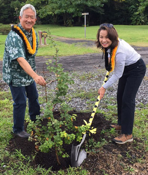 Vincent and Alison planting a 'Ōhi'a Lehua tree that will be named for them at the bee farm.