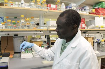 James Turkson holds ironweed plant extract.