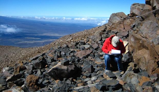 Person doing fieldwork.