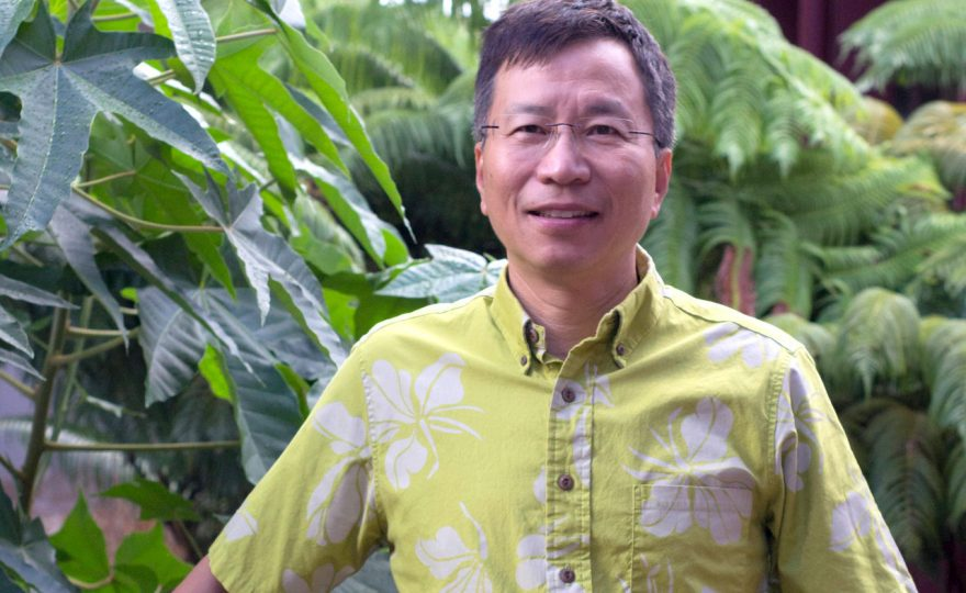 UH Hilo researchers designing sustainable wastewater systems for local industries
