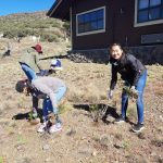 Restoration of Maunakea expanding to support a greenhouse for native species