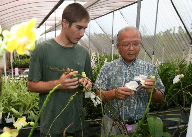 Bill Sakai and student looking at orchids in greenhouse.