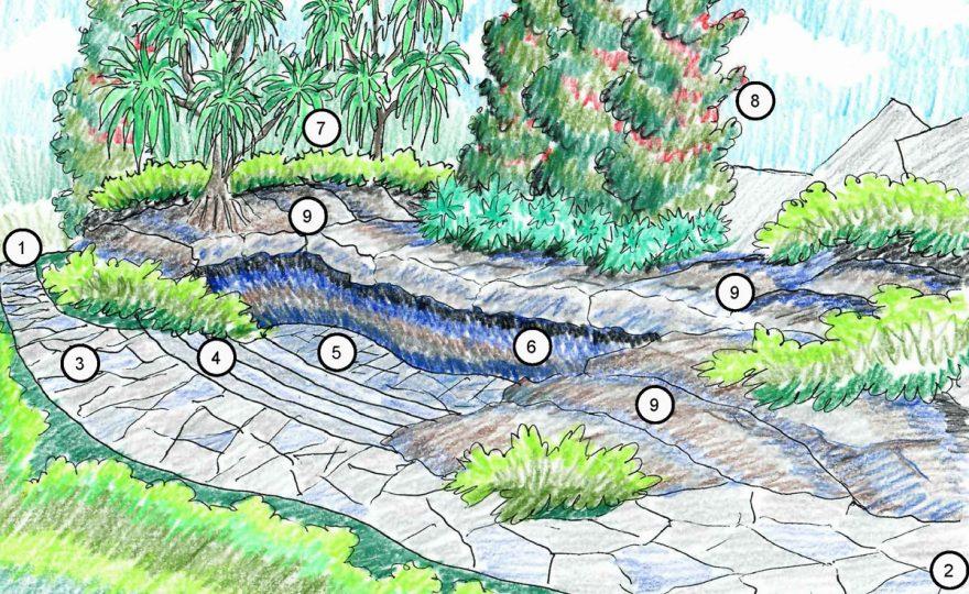 ʻImiloa Astronomy Center plans to create outdoor classroom in native garden