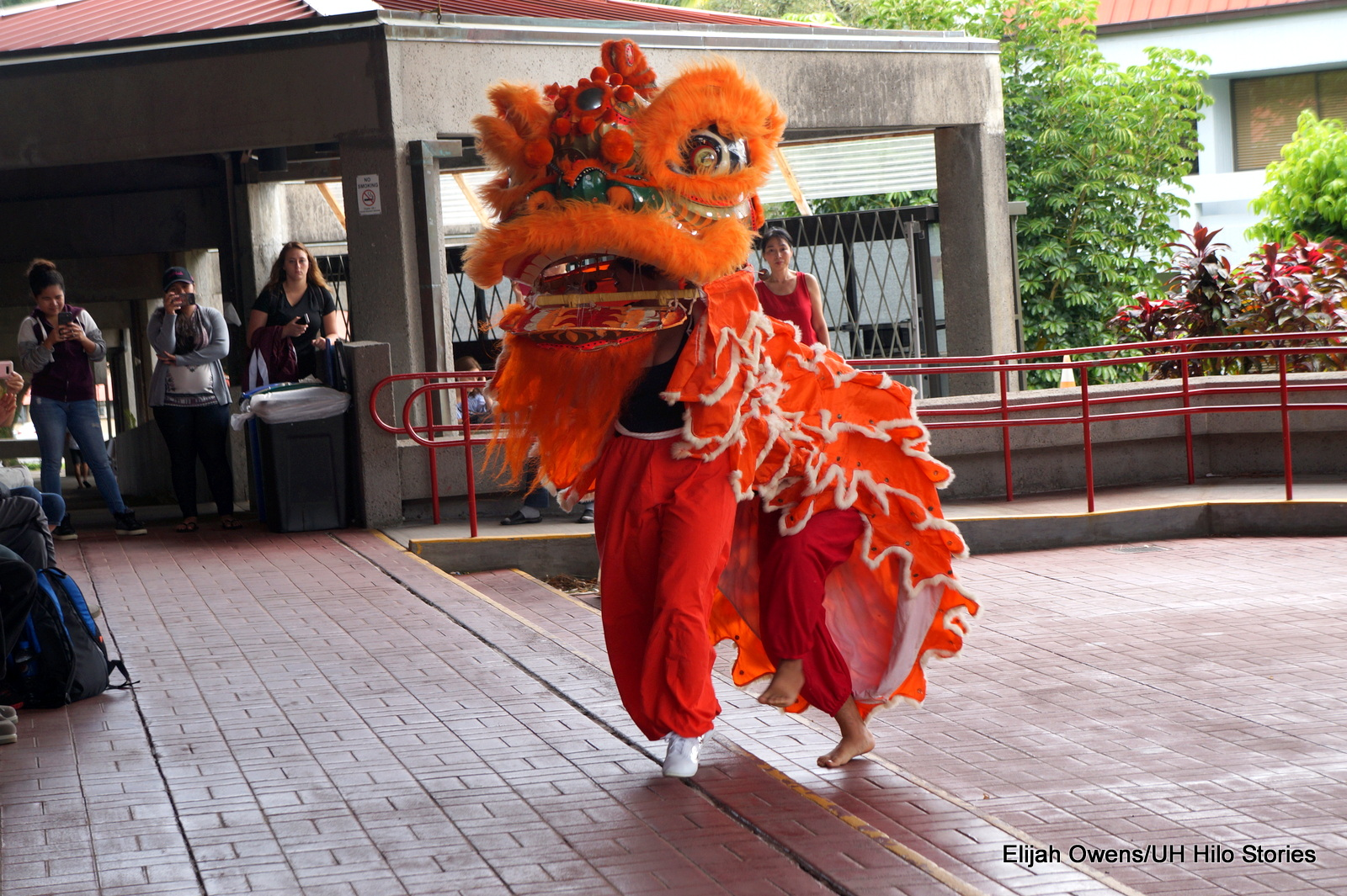Bright orange lion costume, dancing for audience on the library lanai.