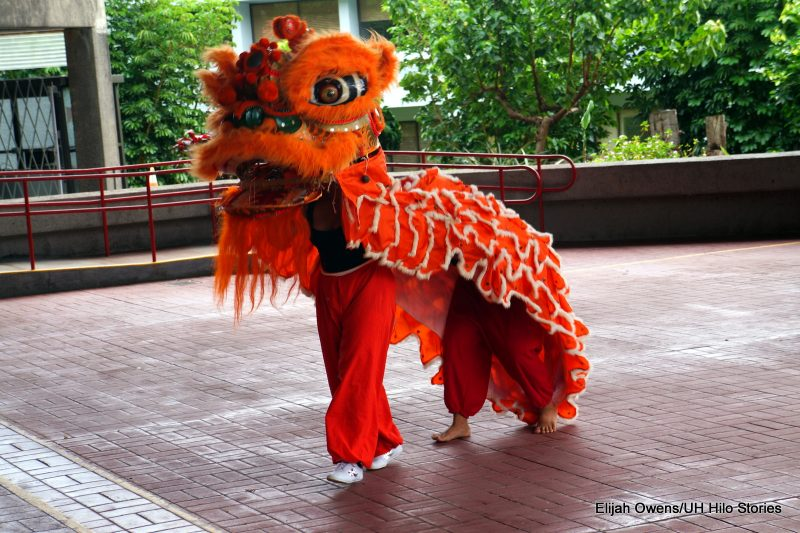 Bright orange costume, Lion dance.