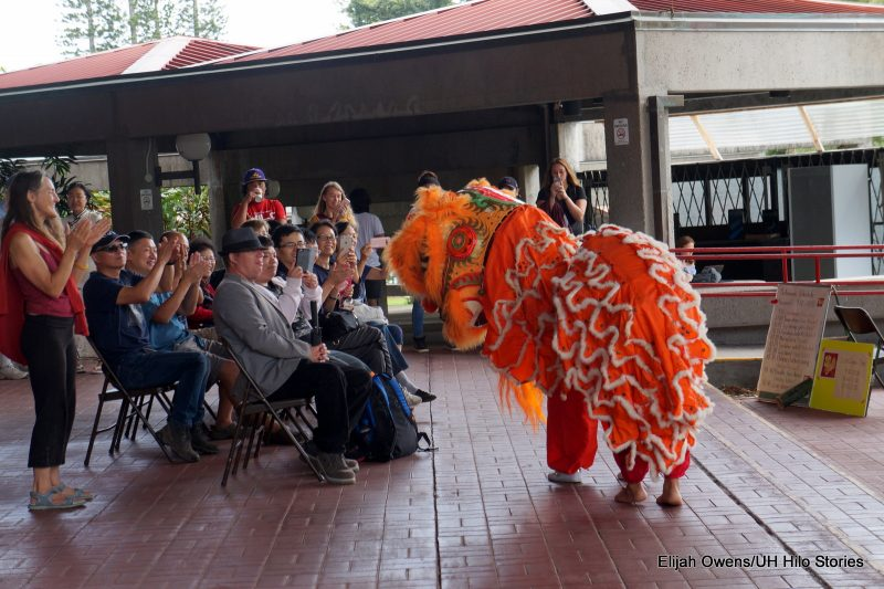 Lion dances close to audience.