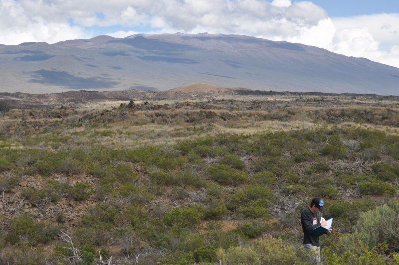 Jeffery Stallman stands in rough terrain of lava and brush recording information in a notebook, mountain in background.