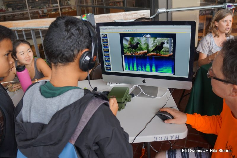 Boy with headphones looks at laptop screen with image of Hawaiian crows and an audio graph while he listens to audio of Hawaiian crow calls.