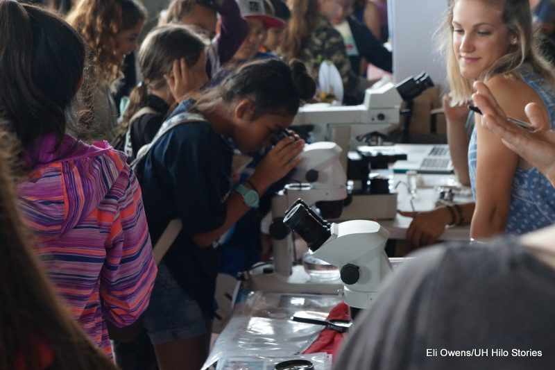 Girl looks through microscope.