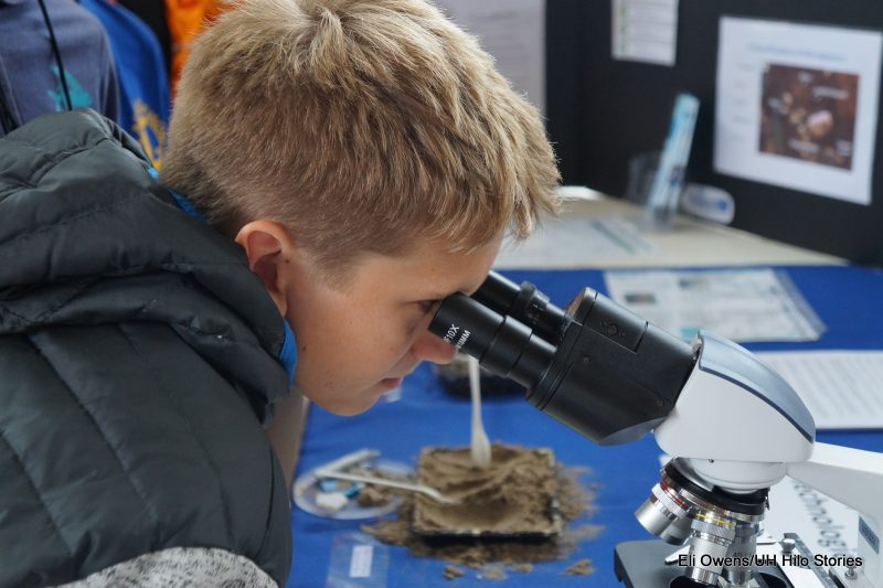 Boy looks through microscope.