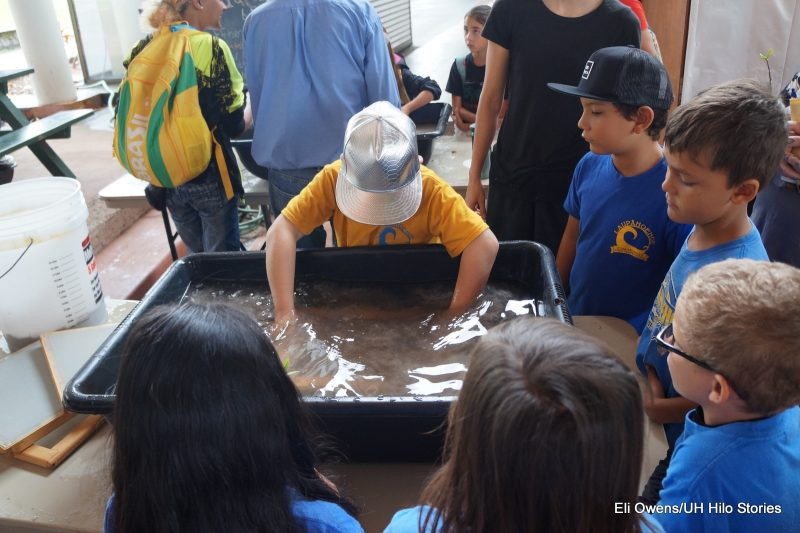 BOY MAKING PAPER, WORKING IN TUB OF WATER.
