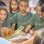 School children gathered around a display of simulated turtles, listening to expert.