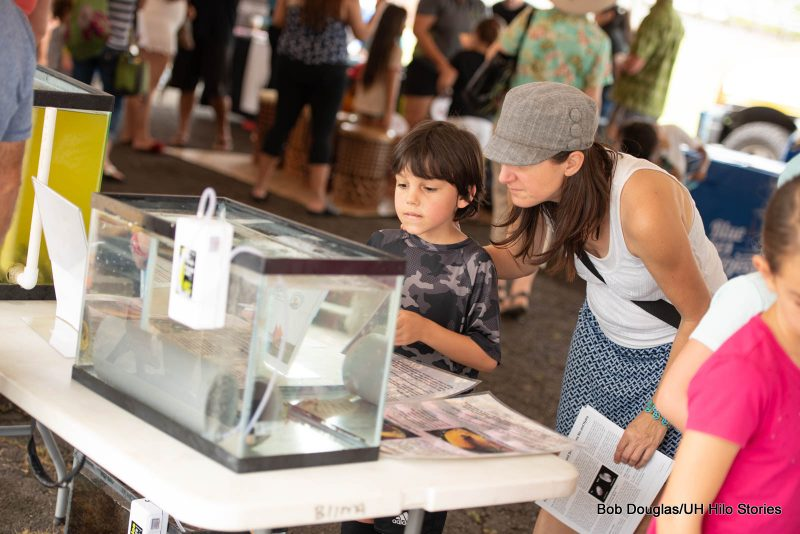 Woman and girl looking into fish tank in the expo tank.