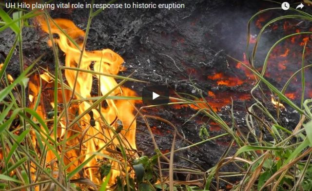 Screenshot from lava video of active flow and burning grass with flames rising.