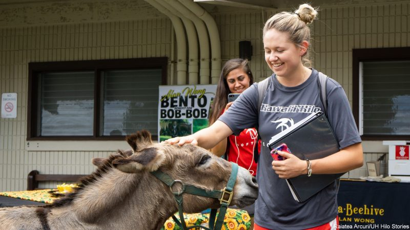 Student with donkey.